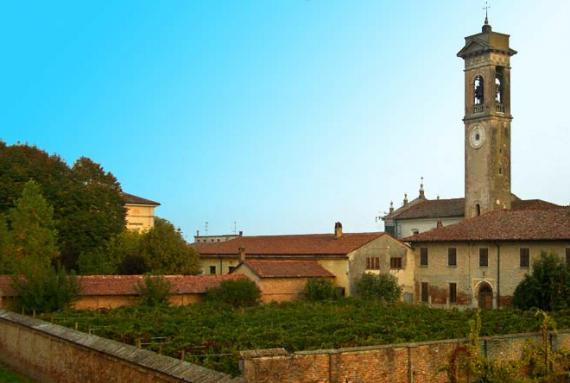Winery Vinicola Decordi 21