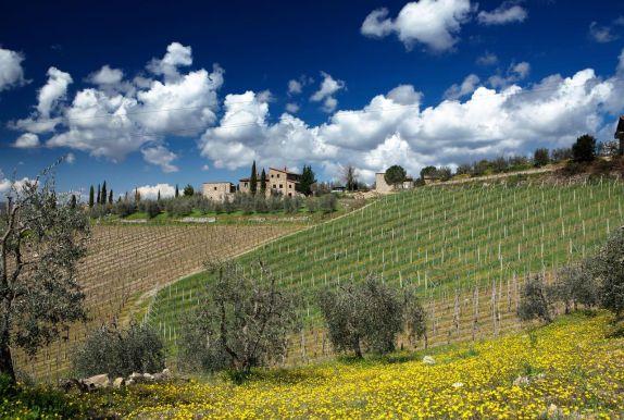 Winery Casa al Vento